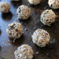 date-apricot balls with coconut and cacao nibs recipe