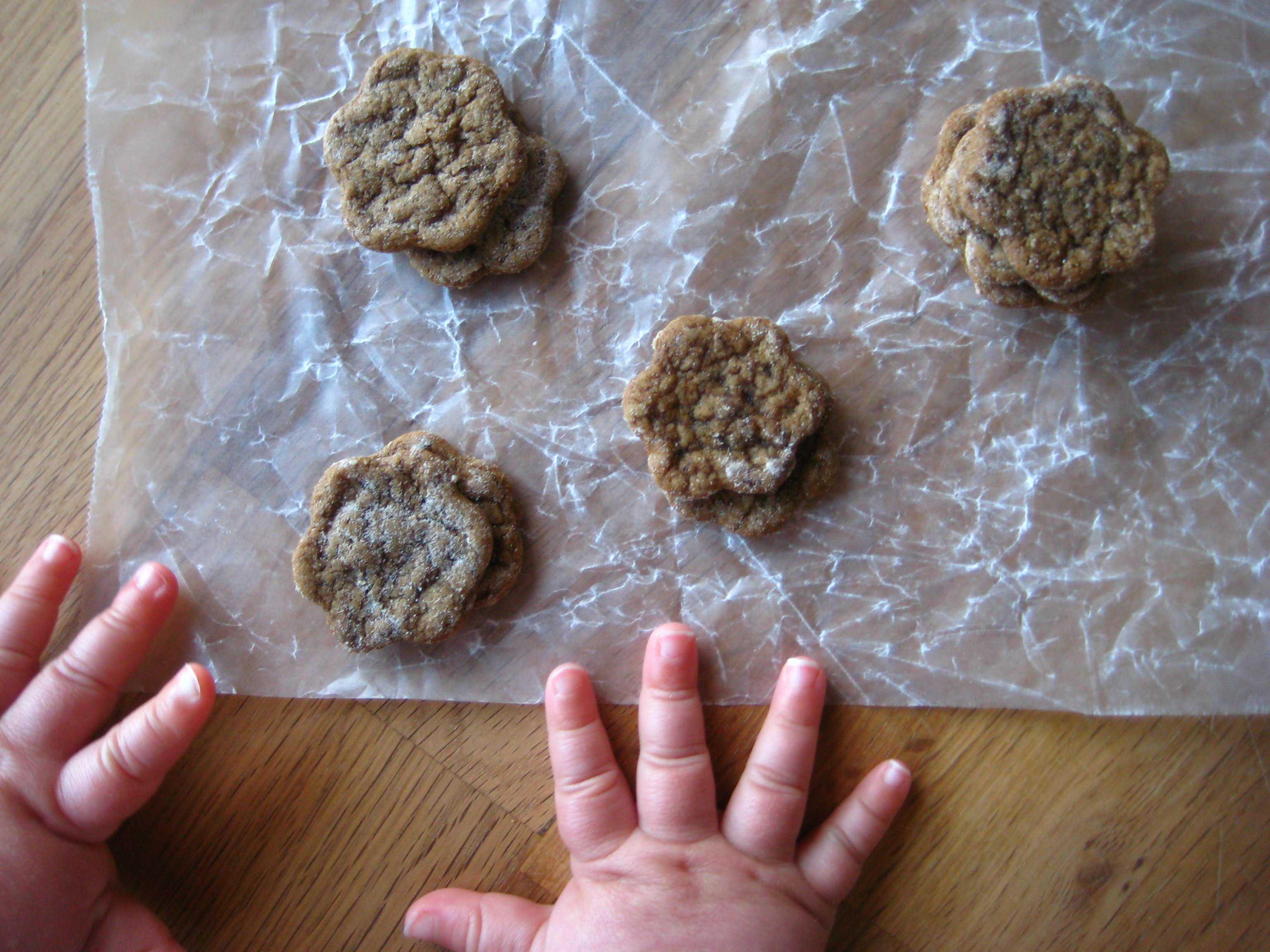 joe froggers | story of a kitchen | story of a kitchen
