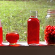 cranberry-infused vodka recipe