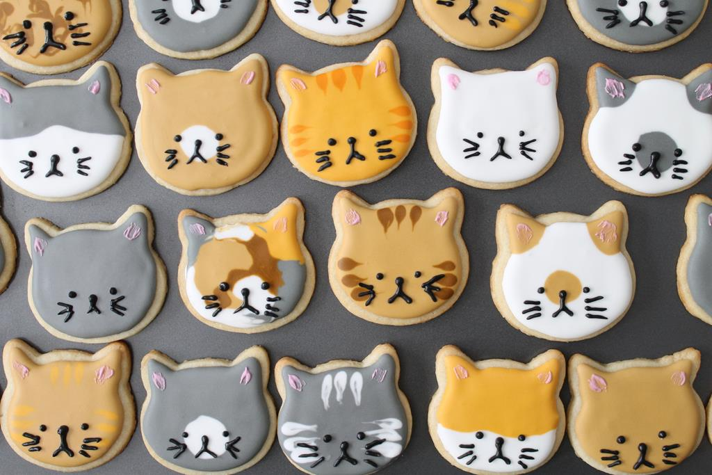 kitty-cookies3