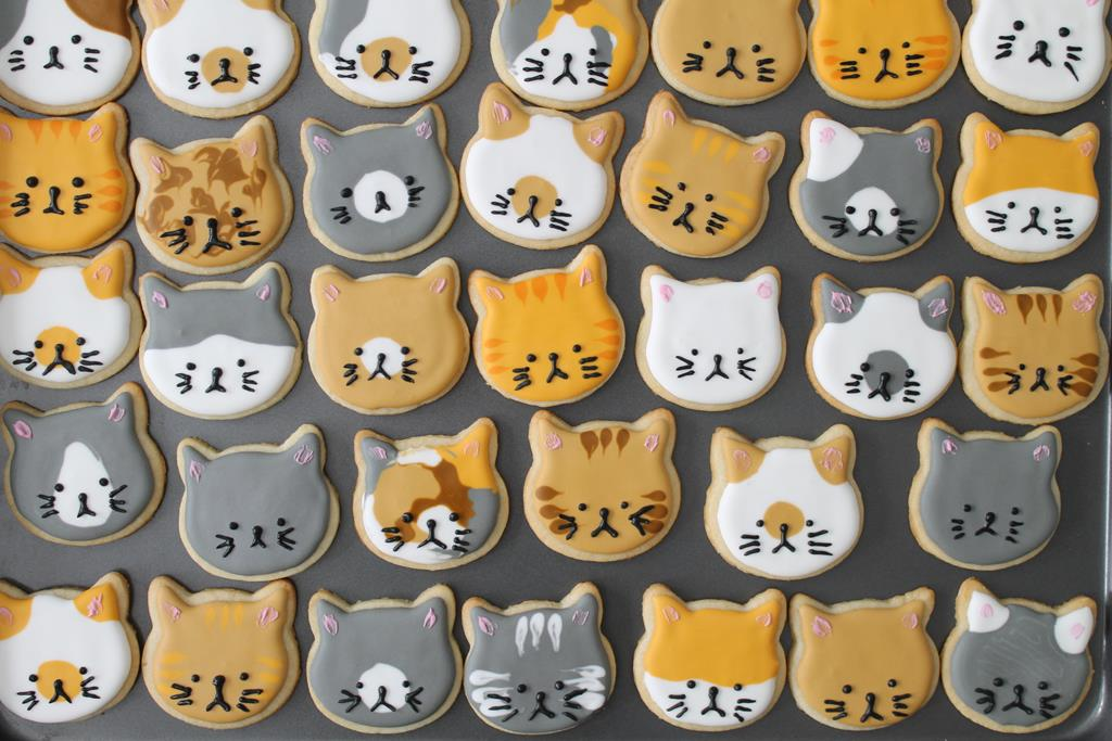 kitty-cookies4