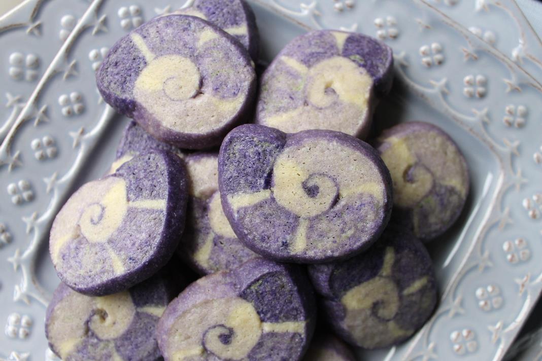 nautilus-cookies2