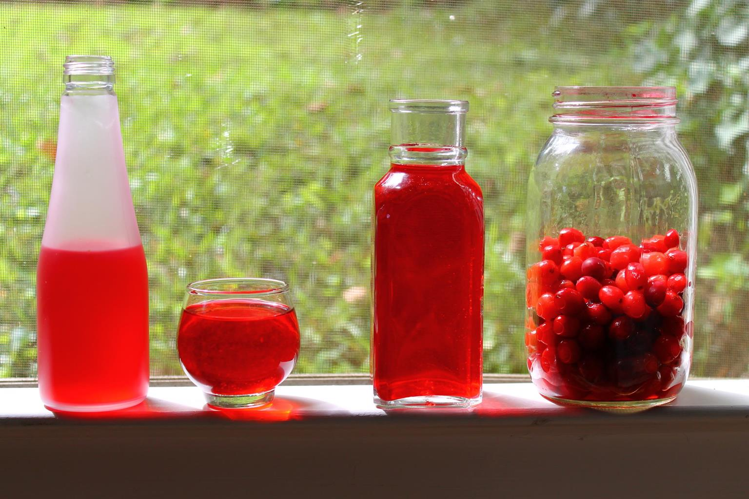 Cranberry tincture on vodka: the way of preparation